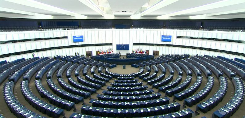 A Petition Has Been Submitted To The European Parliament In Support Of Non-Citizens With More Than 20,000 Signatures